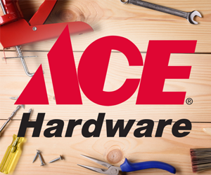 Case Study Ace Hardware SMS Marketing